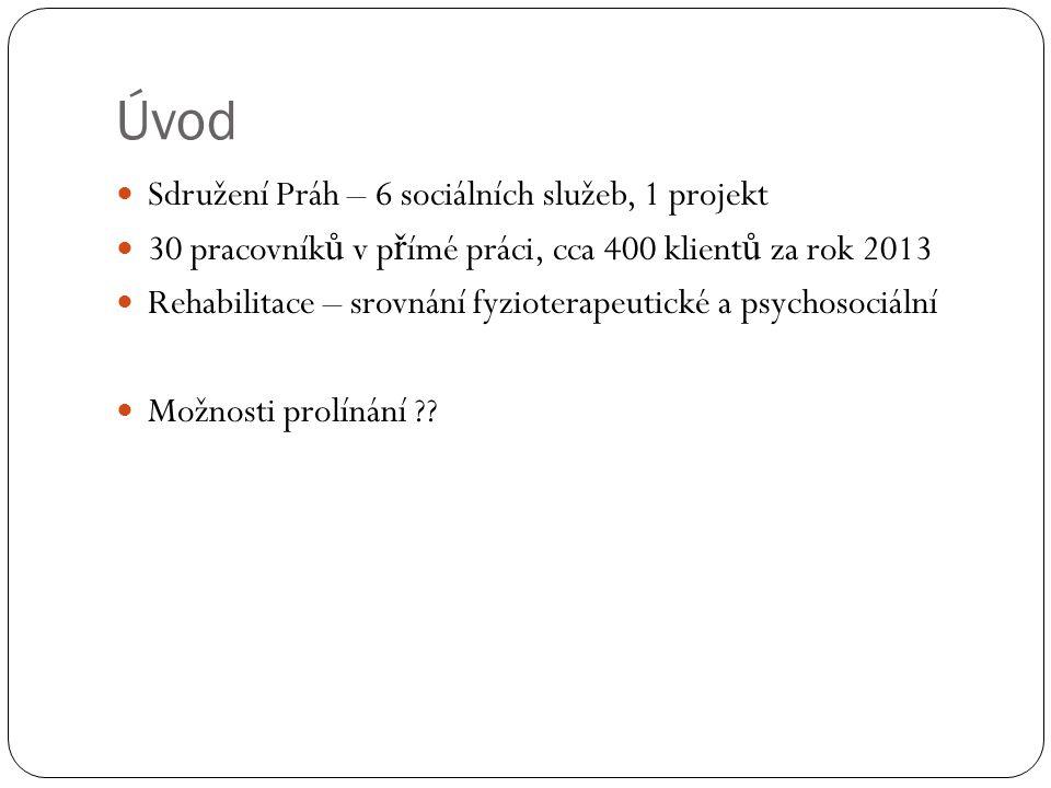 Úvod Sdružení Práh – 6 sociálních služeb, 1 projekt 30 pracovník ů v p ř ímé práci, cca 400 klient ů za rok 2013 Rehabilitace – srovnání fyzioterapeut