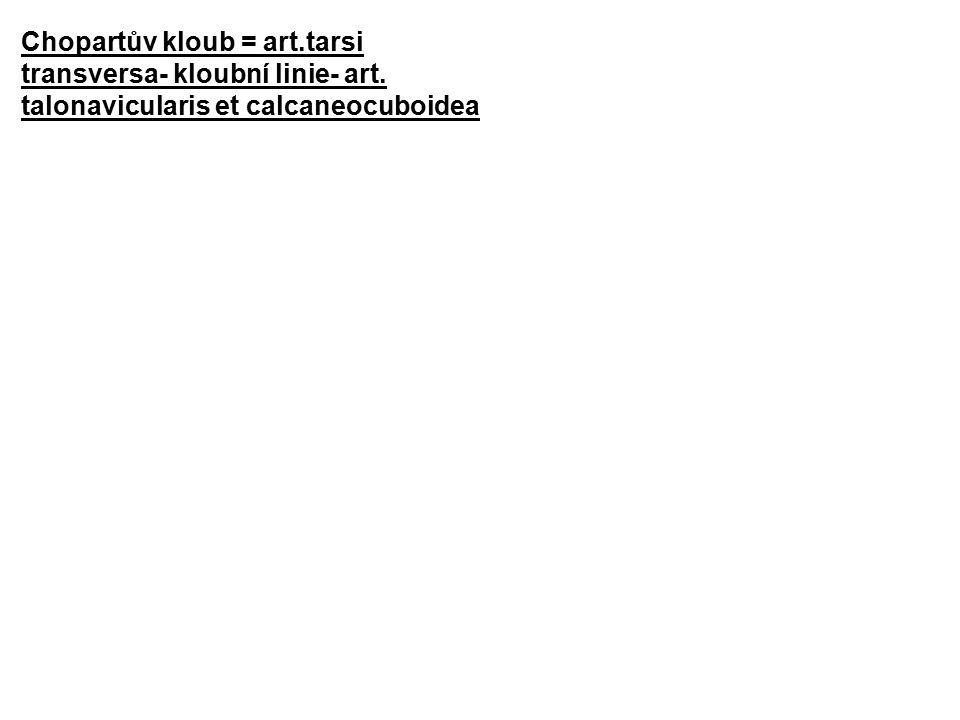 Chopartův kloub = art.tarsi transversa- kloubní linie- art. talonavicularis et calcaneocuboidea