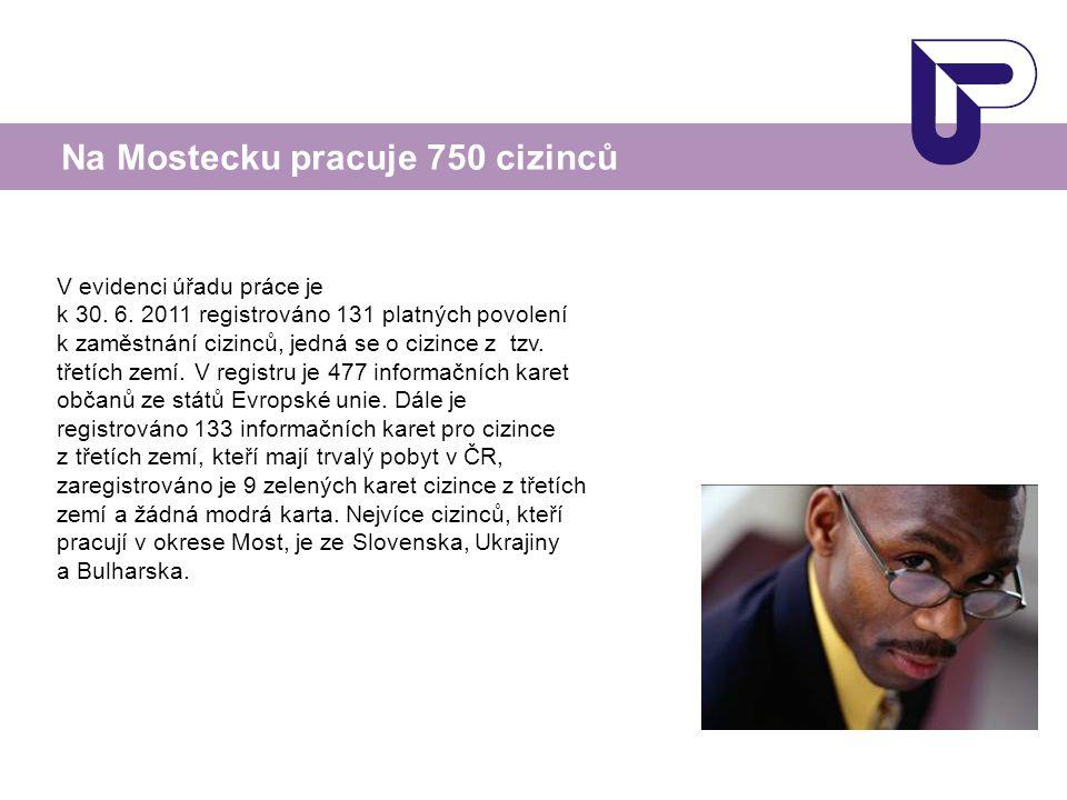 V evidenci úřadu práce je k 30. 6. 2011 registrováno 131 platných povolení k zaměstnání cizinců, jedná se o cizince z tzv. třetích zemí. V registru je