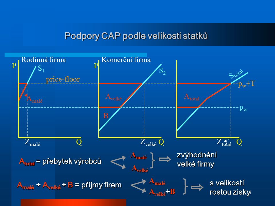 11 Podpory CAP podle velikosti statků pp QQQ pwpw p w +T Rodinná firma S1S1 S2S2 S total A malé A velké A total Komerční firma price-floor Z malé Z ve