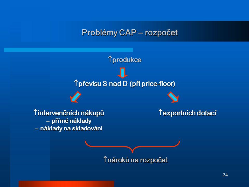 24 Problémy CAP – rozpočet  produkce  převisu S nad D (při price-floor)  intervenčních nákupů ― přímé náklady ― náklady na skladování  exportních