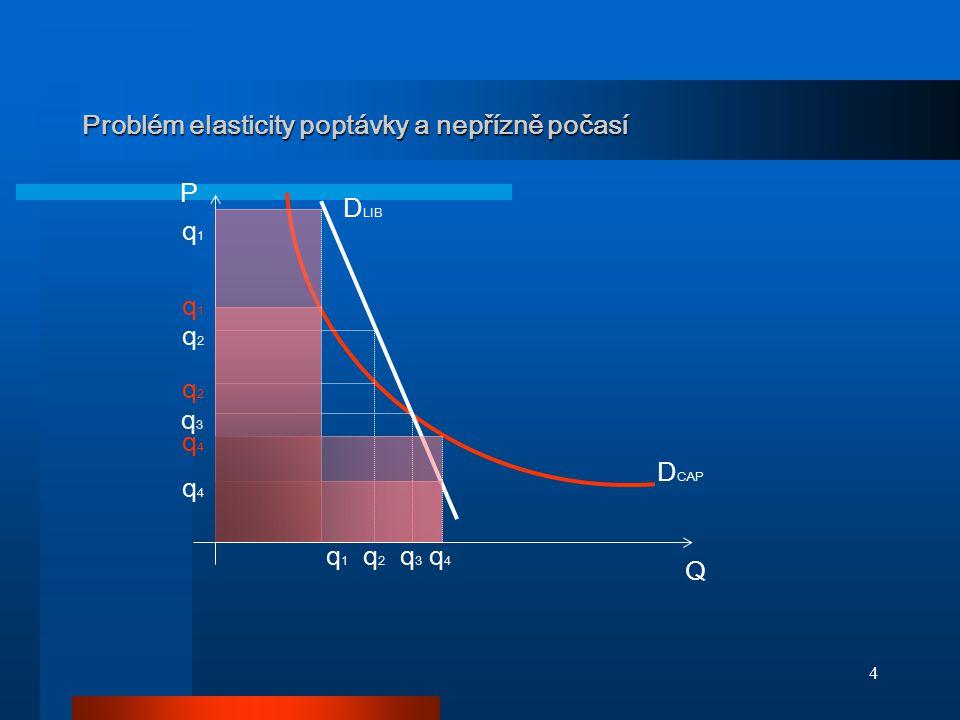 4 Problém elasticity poptávky a nepřízně počasí D CAP D LIB q 1 q 2 q 3 q 4 Q P q4q4 q4q4 q3q3 q2q2 q2q2 q1q1 q1q1