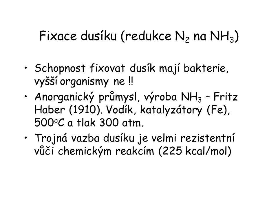 Fixace dusíku (redukce N 2 na NH 3 ) Schopnost fixovat dusík mají bakterie, vyšší organismy ne !! Anorganický průmysl, výroba NH 3 – Fritz Haber (1910