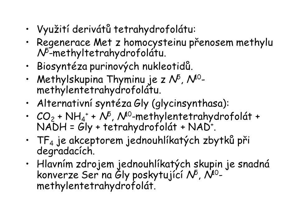 Využití derivátů tetrahydrofolátu: Regenerace Met z homocysteinu přenosem methylu N 5 -methyltetrahydrofolátu. Biosyntéza purinových nukleotidů. Methy