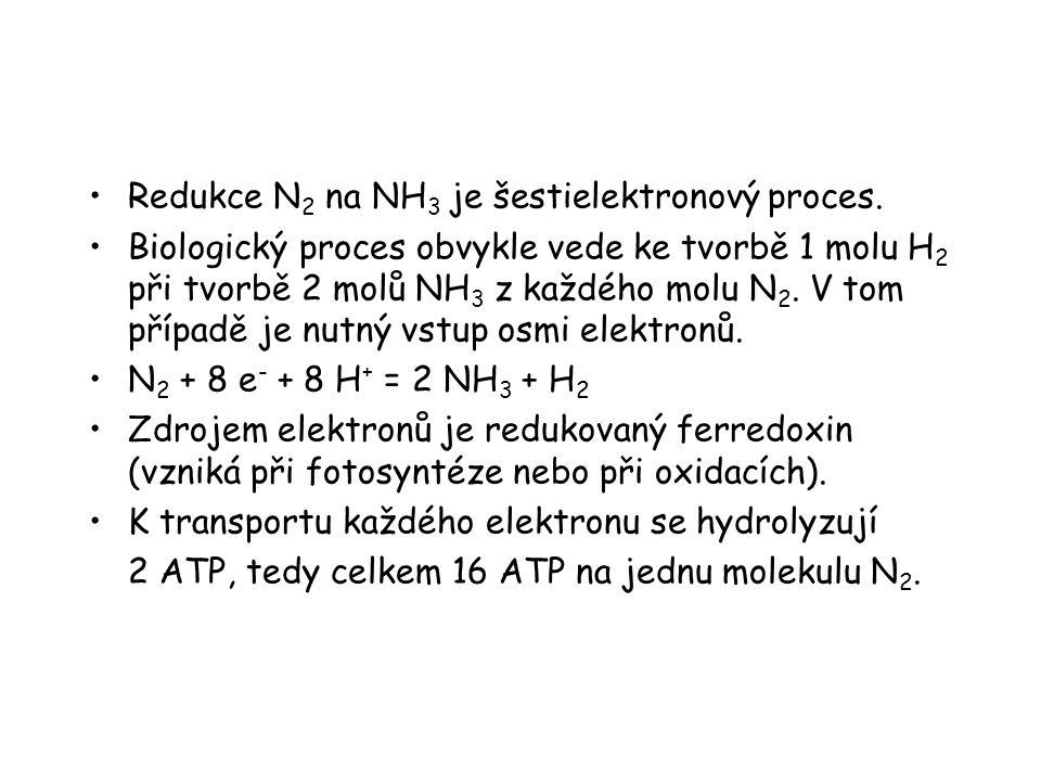 Redukce N 2 na NH 3 je šestielektronový proces. Biologický proces obvykle vede ke tvorbě 1 molu H 2 při tvorbě 2 molů NH 3 z každého molu N 2. V tom p