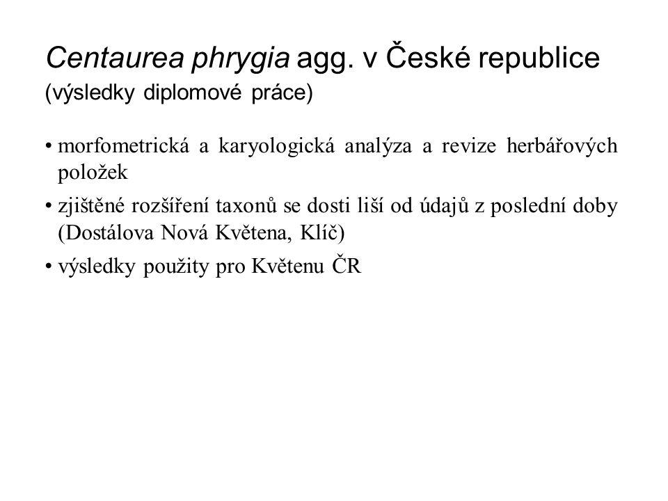 Centaurea phrygia agg. v České republice (výsledky diplomové práce) morfometrická a karyologická analýza a revize herbářových položek zjištěné rozšíře