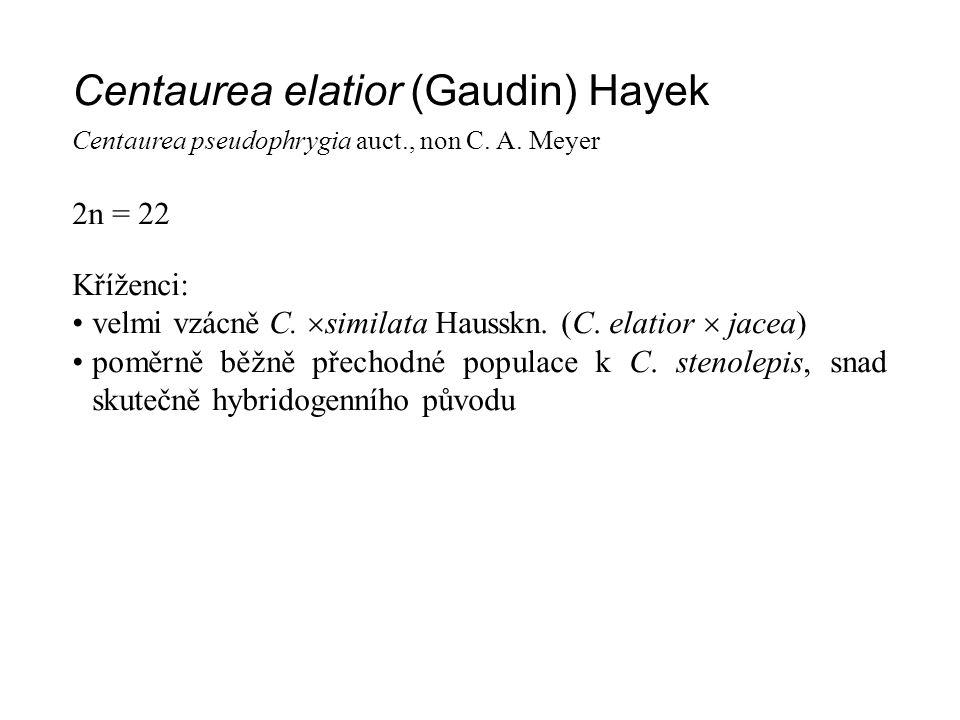 Centaurea elatior (Gaudin) Hayek Centaurea pseudophrygia auct., non C. A. Meyer 2n = 22 Kříženci: velmi vzácně C.  similata Hausskn. (C. elatior  ja