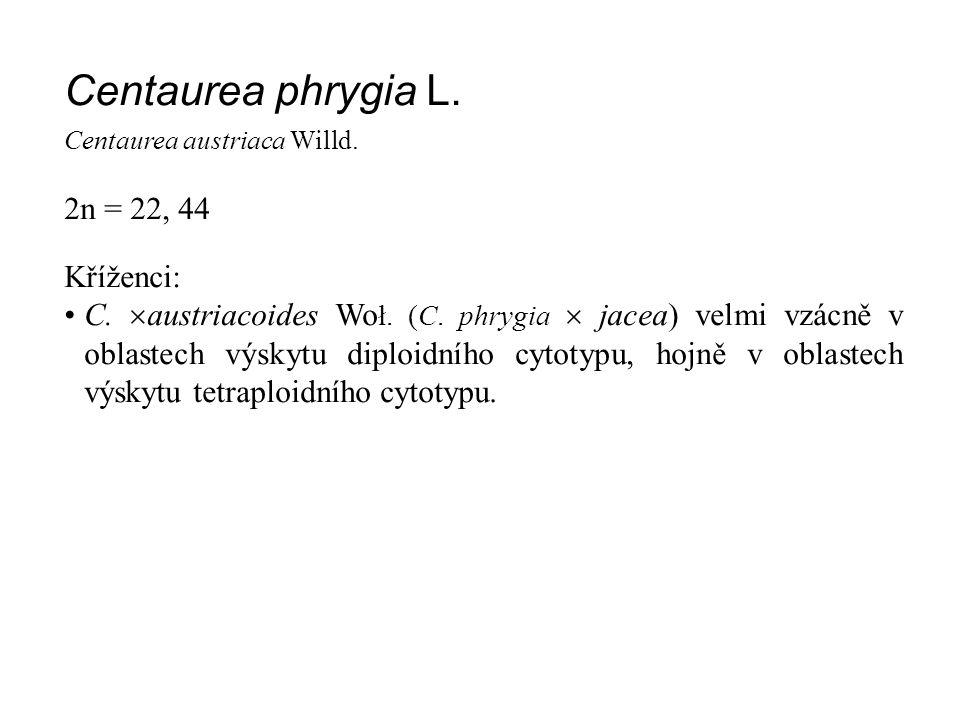 Centaurea phrygia L. Centaurea austriaca Willd. 2n = 22, 44 Kříženci: C.  austriacoides Wo ł. (C. phrygia  jacea) velmi vzácně v oblastech výskytu d