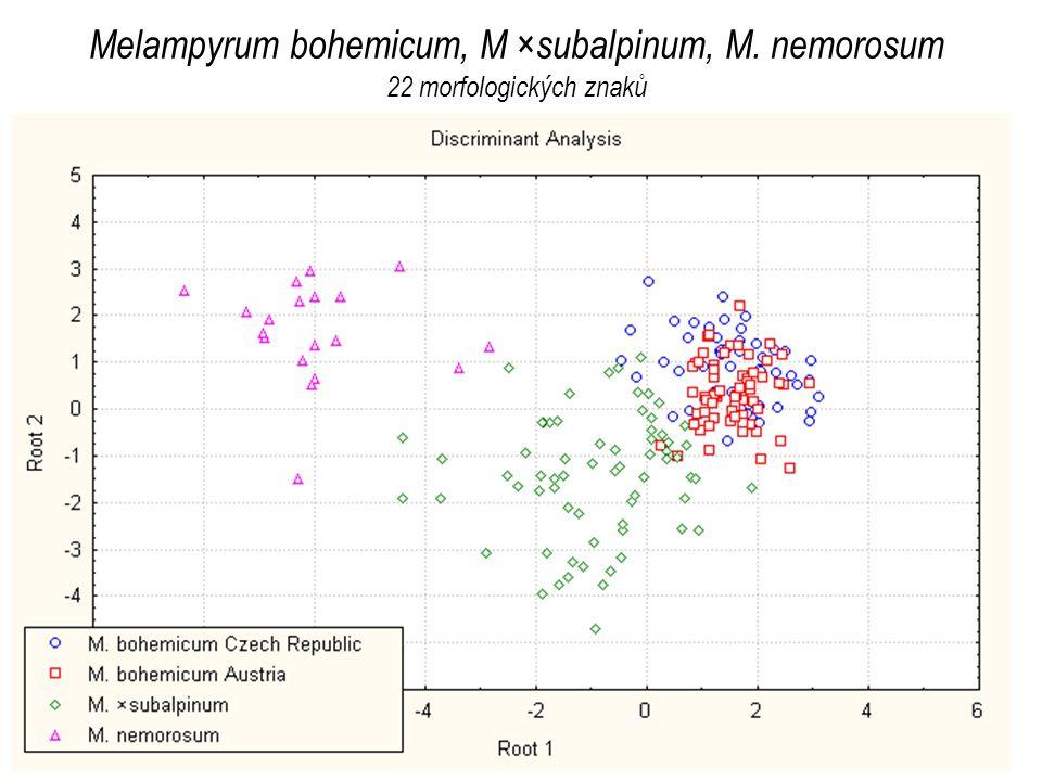 Melampyrum bohemicum, M ×subalpinum, M. nemorosum 22 morfologických znaků