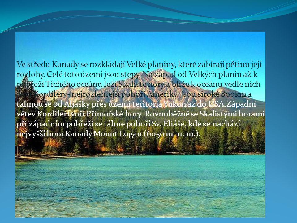 Ve středu Kanady se rozkládají Velké planiny, které zabírají pětinu její rozlohy. Celé toto území jsou stepy. Na západ od Velkých planin až k pobřeží