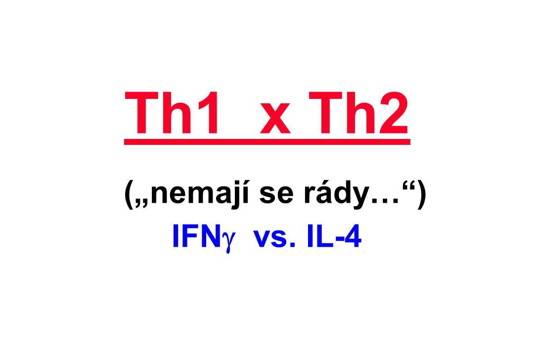"""Th1 x Th2 (""""nemají se rády…"""") IFN  vs. IL-4"""
