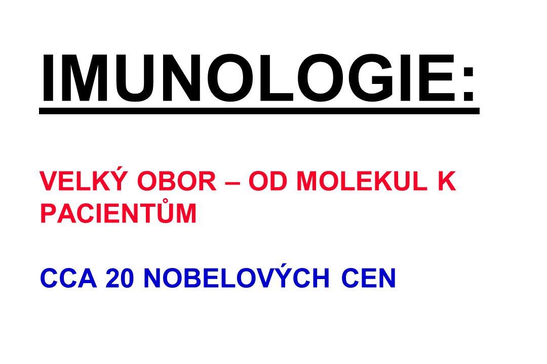 LIKVIDACE MRTVÉ BUŇKY Makrofág a apoptotická buňka