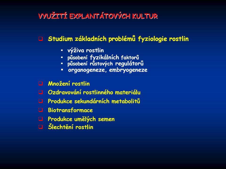 VYUŽITÍ EXPLANTÁTOVÝCH KULTUR  Studium základních problémů fyziologie rostlin  Množení rostlin  Ozdravování rostlinného materiálu  Produkce sekund