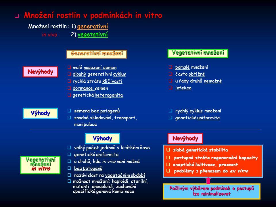 Množení rostlin v podmínkách in vitro  Množení rostlin v podmínkách in vitro Generativní množení  malé nasazení semen  rychlá ztráta klíčivosti  d