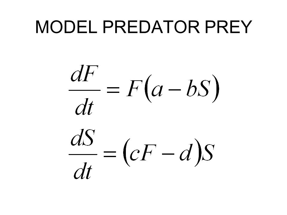 MODEL PREDATOR PREY