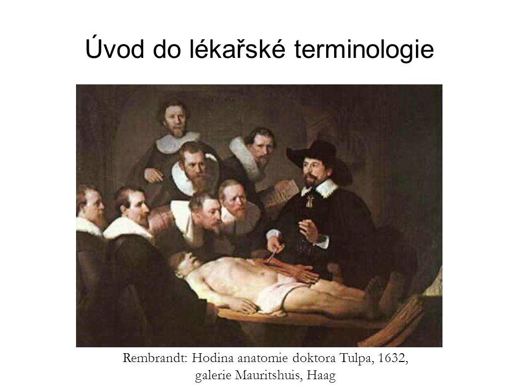 Úvod do lékařské terminologie Rembrandt: Hodina anatomie doktora Tulpa, 1632, galerie Mauritshuis, Haag