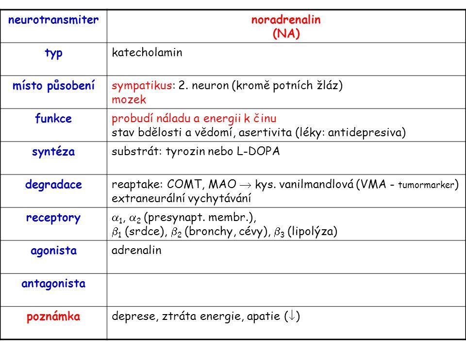 neurotransmiternoradrenalin (NA) typkatecholamin místo působenísympatikus: 2. neuron (kromě potních žláz) mozek funkceprobudí náladu a energii k činu