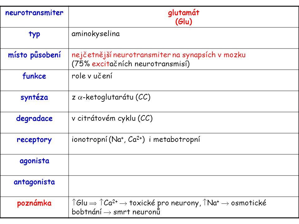 neurotransmiterglutamát (Glu) typaminokyselina místo působenínejčetnější neurotransmiter na synapsích v mozku (75% excitačních neurotransmisí) funkcer