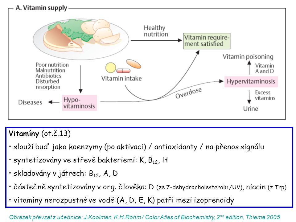 Obrázek převzat z učebnice: J.Koolman, K.H.Röhm / Color Atlas of Biochemistry, 2 nd edition, Thieme 2005 Vitamíny (ot.č.13) slouží buď jako koenzymy (