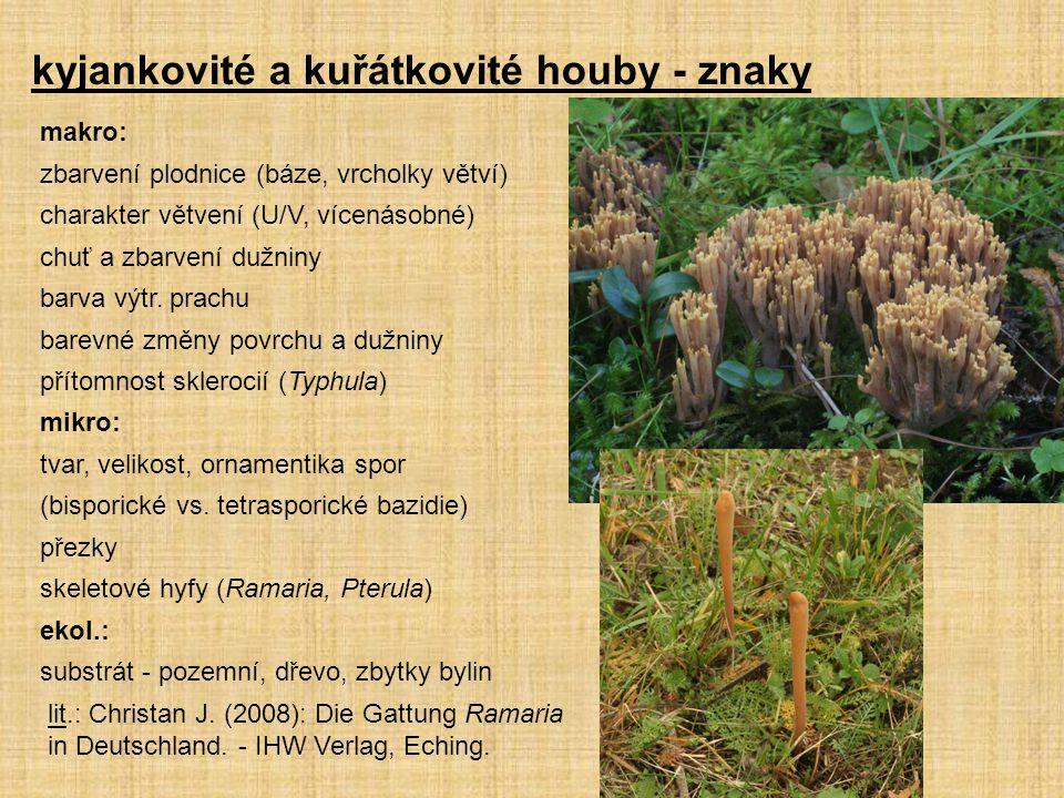 kyjankovité a kuřátkovité houby - znaky makro: zbarvení plodnice (báze, vrcholky větví) charakter větvení (U/V, vícenásobné) chuť a zbarvení dužniny barva výtr.