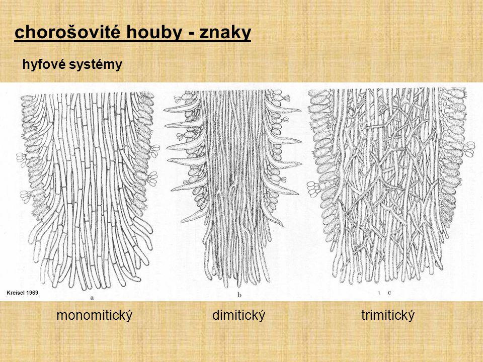 Kreisel 1969 monomitický dimitický trimitický hyfové systémy chorošovité houby - znaky