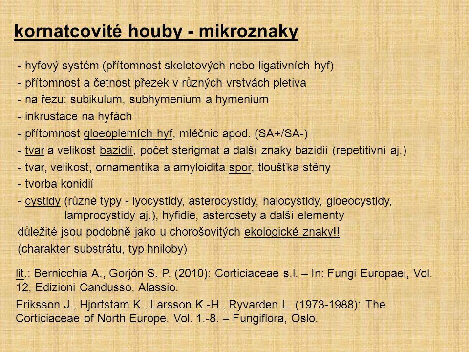 kornatcovité houby - mikroznaky - hyfový systém (přítomnost skeletových nebo ligativních hyf) - přítomnost a četnost přezek v různých vrstvách pletiva - na řezu: subikulum, subhymenium a hymenium - inkrustace na hyfách - přítomnost gloeoplerních hyf, mléčnic apod.