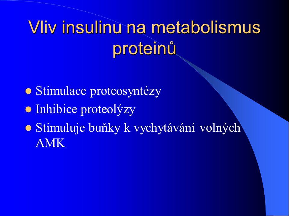 Vliv insulinu na metabolismus lipidů Stimulace lipogeneze a) dodáním acetyl-CoA a NADPH na syntézu MK b) dodáním glycerolu pro syntézy TG c) inhibice lipolýzy v játrech