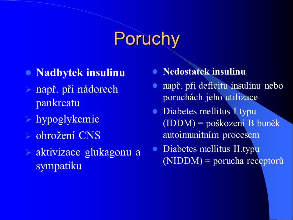 Vliv insulinu na metabolismus proteinů Stimulace proteosyntézy Inhibice proteolýzy Stimuluje buňky k vychytávání volných AMK
