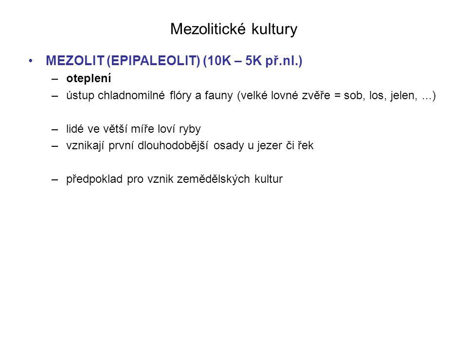 Mezolitické kultury MEZOLIT (EPIPALEOLIT) (10K – 5K př.nl.) –oteplení –ústup chladnomilné flóry a fauny (velké lovné zvěře = sob, los, jelen,...) –lid