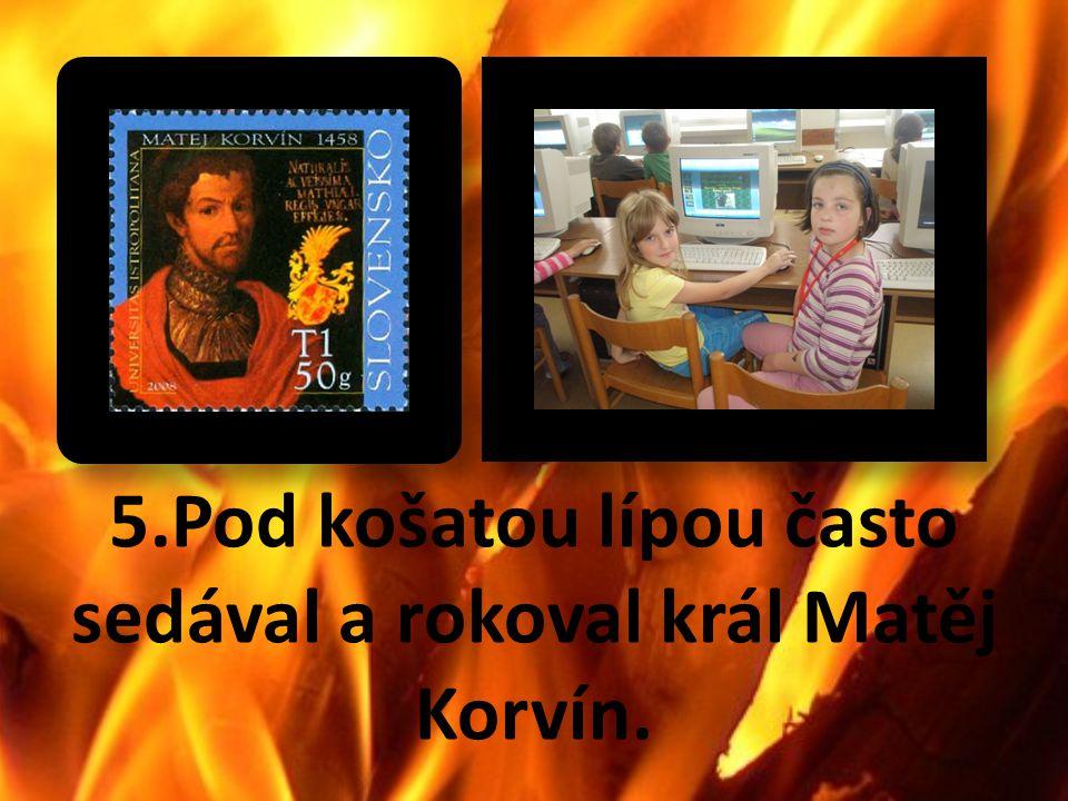 5.Pod košatou lípou často sedával a rokoval král Matěj Korvín.