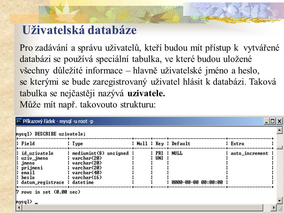 Pro zadávání a správu uživatelů, kteří budou mít přístup k vytvářené databázi se používá speciální tabulka, ve které budou uložené všechny důležité informace – hlavně uživatelské jméno a heslo, se kterými se bude zaregistrovaný uživatel hlásit k databázi.