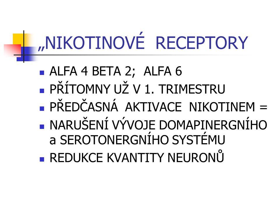 """""""NIKOTINOVÉ RECEPTORY ALFA 4 BETA 2; ALFA 6 PŘÍTOMNY UŽ V 1."""