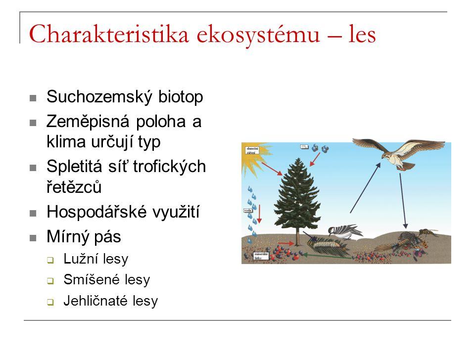 Charakteristika ekosystému – les Suchozemský biotop Zeměpisná poloha a klima určují typ Spletitá síť trofických řetězců Hospodářské využití Mírný pás