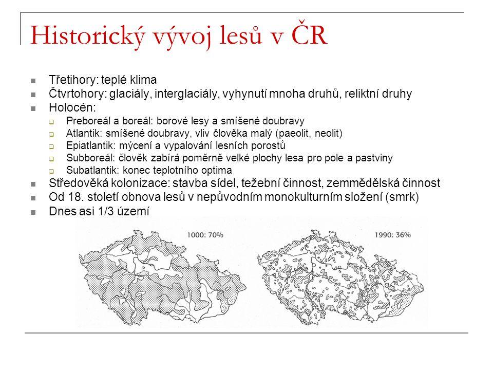 Historický vývoj lesů v ČR Třetihory: teplé klima Čtvrtohory: glaciály, interglaciály, vyhynutí mnoha druhů, reliktní druhy Holocén:  Preboreál a bor