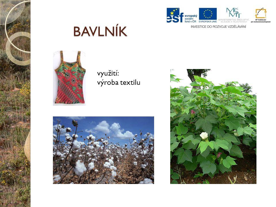 BAVLNÍK využití: výroba textilu