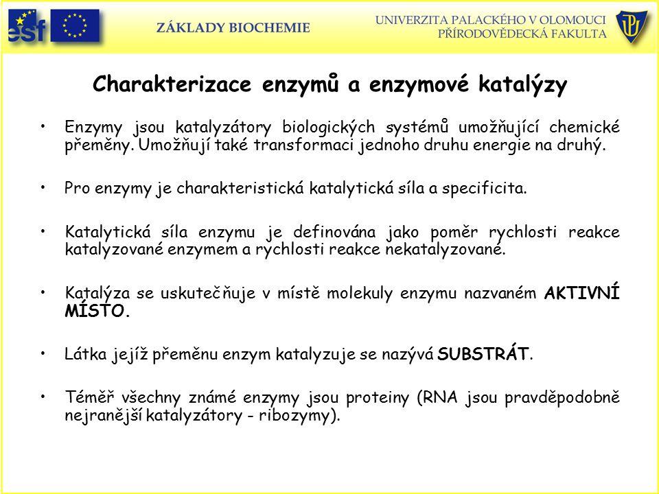 Charakterizace enzymů a enzymové katalýzy Enzymy jsou katalyzátory biologických systémů umožňující chemické přeměny. Umožňují také transformaci jednoh