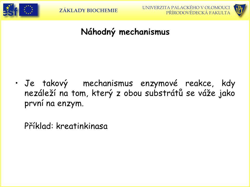 Náhodný mechanismus Je takový mechanismus enzymové reakce, kdy nezáleží na tom, který z obou substrátů se váže jako první na enzym. Příklad: kreatinki