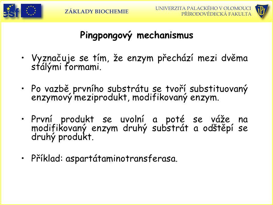 Vyznačuje se tím, že enzym přechází mezi dvěma stálými formami. Po vazbě prvního substrátu se tvoří substituovaný enzymový meziprodukt, modifikovaný e