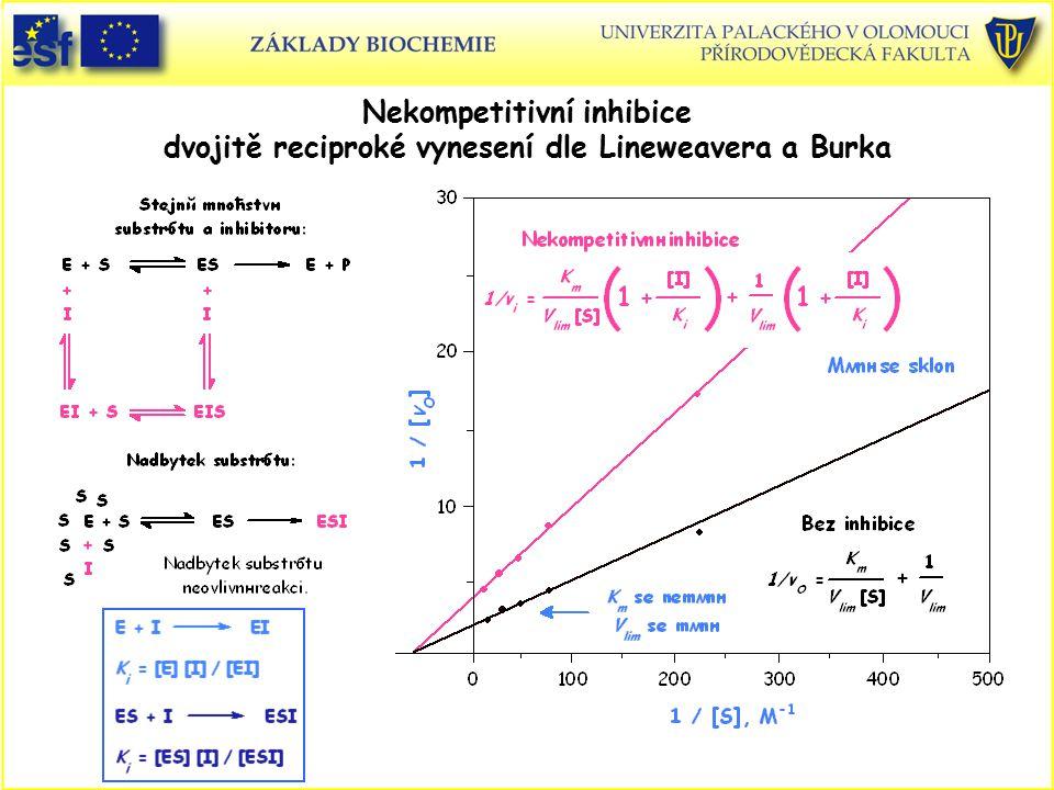 Nekompetitivní inhibice dvojitě reciproké vynesení dle Lineweavera a Burka