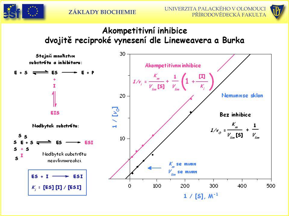 Akompetitivní inhibice dvojitě reciproké vynesení dle Lineweavera a Burka