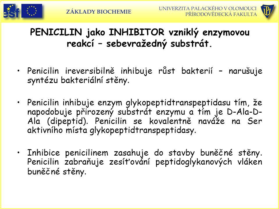 PENICILIN jako INHIBITOR vzniklý enzymovou reakcí – sebevražedný substrát. Penicilin ireversibilně inhibuje růst bakterií – narušuje syntézu bakteriál