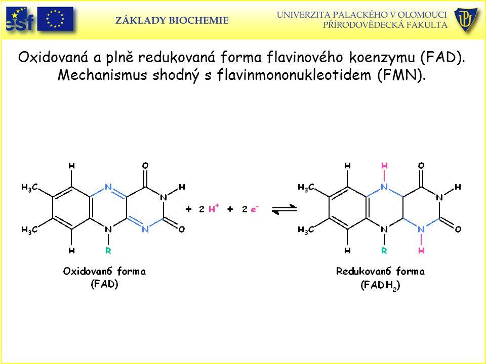 Oxidovaná a plně redukovaná forma flavinového koenzymu (FAD). Mechanismus shodný s flavinmononukleotidem (FMN).
