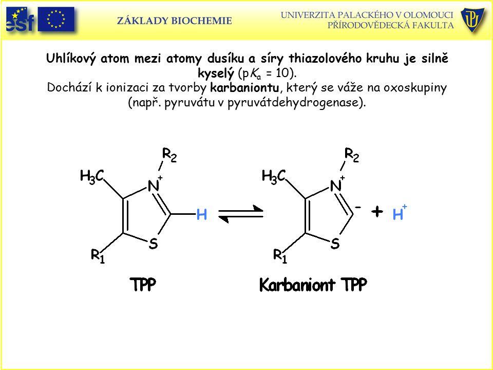 Uhlíkový atom mezi atomy dusíku a síry thiazolového kruhu je silně kyselý (pK a = 10). Dochází k ionizaci za tvorby karbaniontu, který se váže na oxos