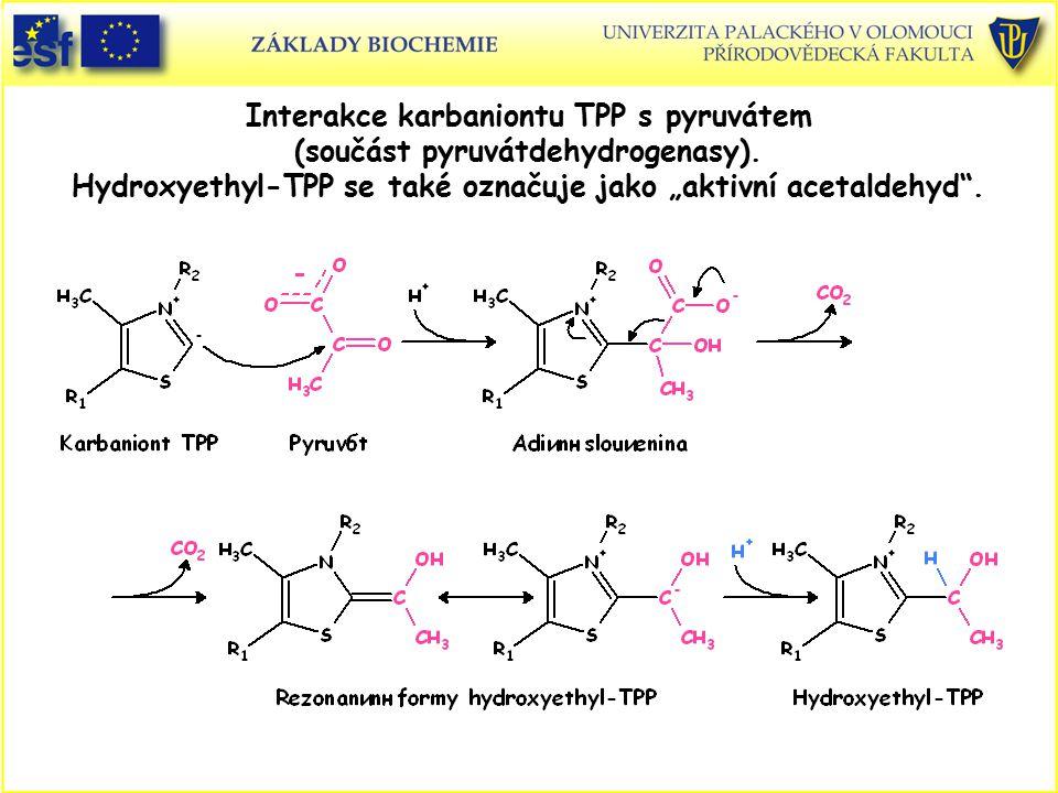 """Interakce karbaniontu TPP s pyruvátem (součást pyruvátdehydrogenasy). Hydroxyethyl-TPP se také označuje jako """"aktivní acetaldehyd""""."""