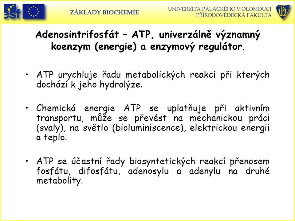 Adenosintrifosfát – ATP, univerzálně významný koenzym (energie) a enzymový regulátor. ATP urychluje řadu metabolických reakcí při kterých dochází k je