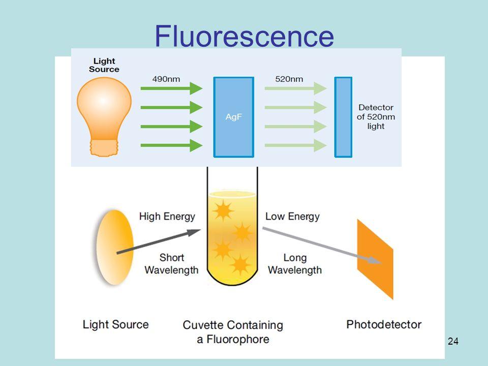24 Fluorescence