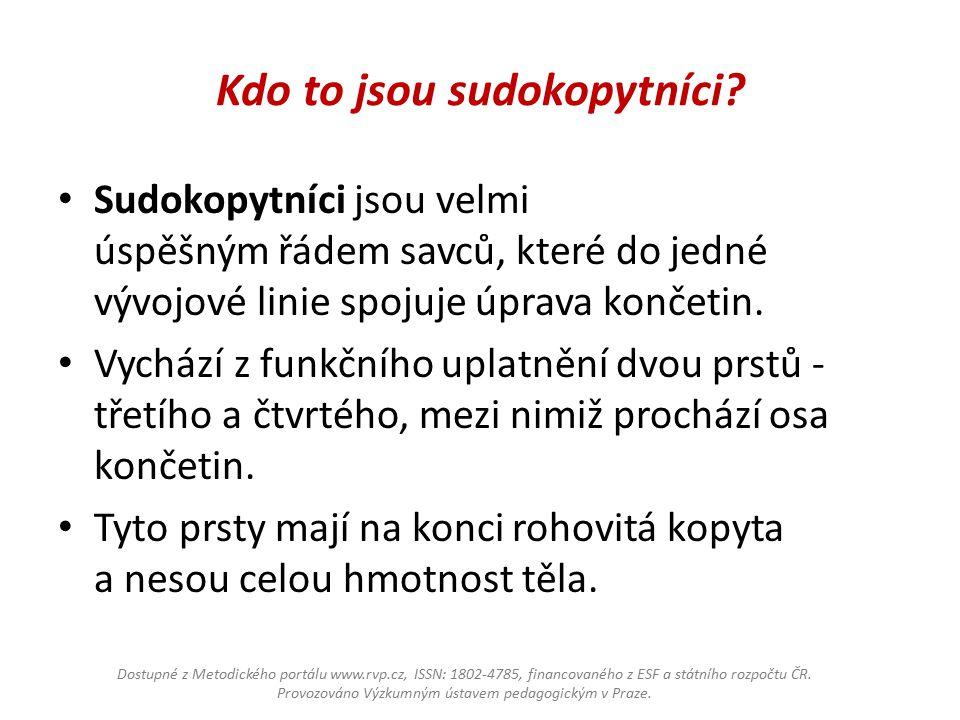 Zařazení sudokopytníků Říše: Živočichové Kmen: Strunatci Třída: Savci Podtřída: Placentálové Řád: sudokopytníci Dostupné z Metodického portálu www.rvp.cz, ISSN: 1802-4785, financovaného z ESF a státního rozpočtu ČR.