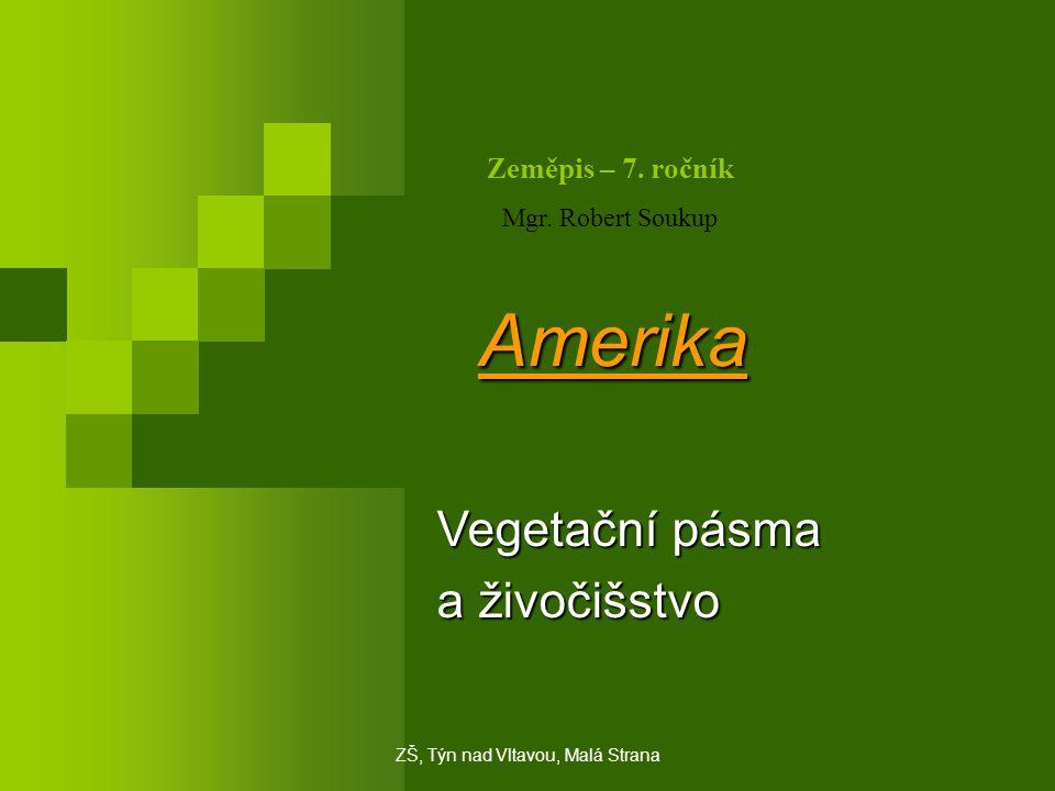 Amerika Vegetační pásma a živočišstvo Zeměpis – 7. ročník Mgr. Robert Soukup ZŠ, Týn nad Vltavou, Malá Strana