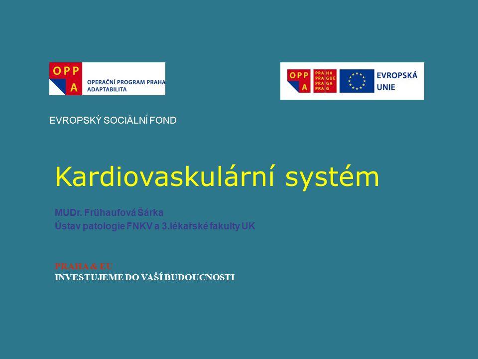 Kardiovaskulární systém EVROPSKÝ SOCIÁLNÍ FOND PRAHA & EU INVESTUJEME DO VAŠÍ BUDOUCNOSTI MUDr.