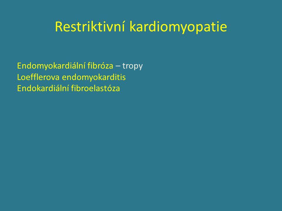 Restriktivní kardiomyopatie Endomyokardiální fibróza – tropy Loefflerova endomyokarditis Endokardiální fibroelastóza